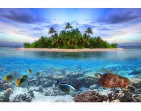 TROPICAL ISLAND - obraz szklany - grafika