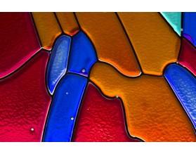 WITRAŻ - panel szklany do łazienki - grafika