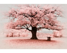 PINK TREE - obraz na szkle - grafika