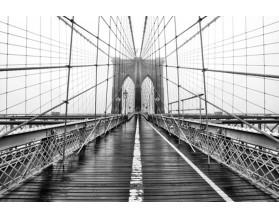 LINOWY MOST BROOKLYŃSKI - obraz na szkle - grafika