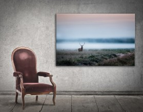 JELEŃ W PASTELACH - obraz na płótnie
