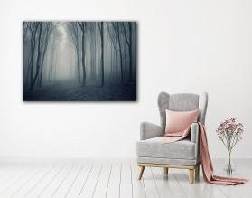 Las w mgle - obraz na płótnie