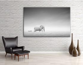 Słonie w mgle- obraz na płótnie