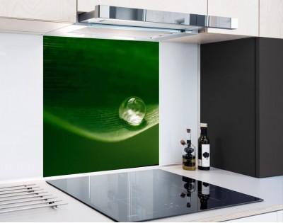 ROSA NA LIŚCIU - panel szklany