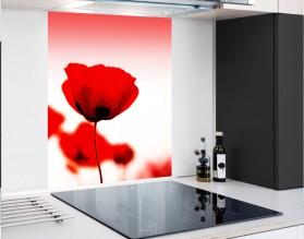 POLNE MAKI - panel szklany - grafika