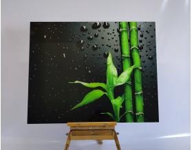 WYPRZEDAŻ! BAMBUS W ROSIE - hartowany obraz szklany 100x80