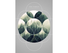 THE FOREST - designerski plakat w ramie - grafika